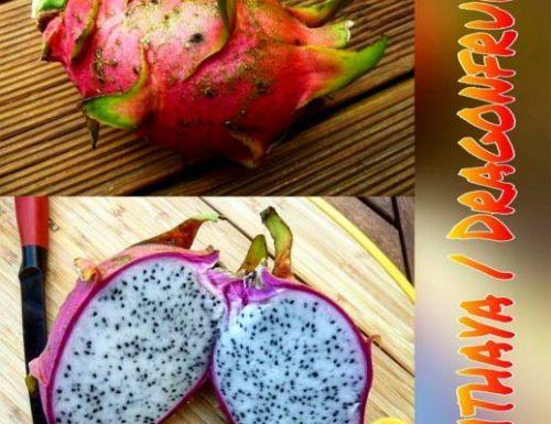 The Dragon Fruit / Pithaya – 10 Surprising Benefits