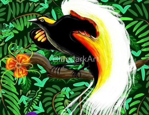 Paradise Bird Fire Feathers ✿ Design by BluedarkArt