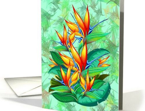 Floral Cards SOLD! Designs by BluedarkArt | GreetinCardUniverse Shop