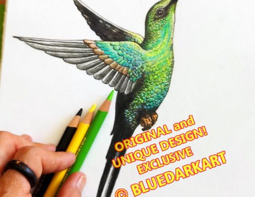 Hummingbird 🖍 Colored Pencils 💚 NEW Artwork 🖍 Artist at Work 🖍 ©️ BluedarkArt TheChameleonart