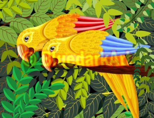 Yellow Parrots Caribbean Art 🌞 Vector Art ©️ BluedarkArt